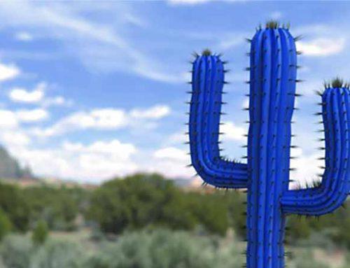 Mobotix anuncia concepto Cactus